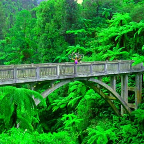 Bridge to Nowhere view