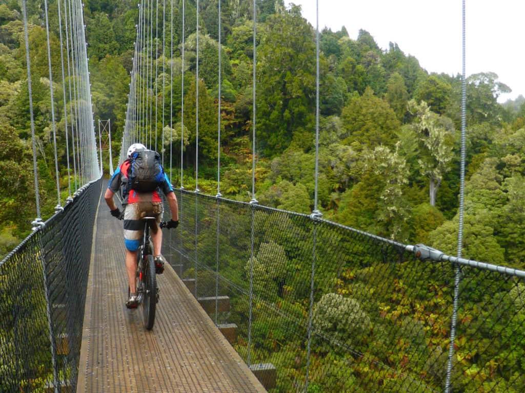 Maramataha suspension bridge Timber Trail