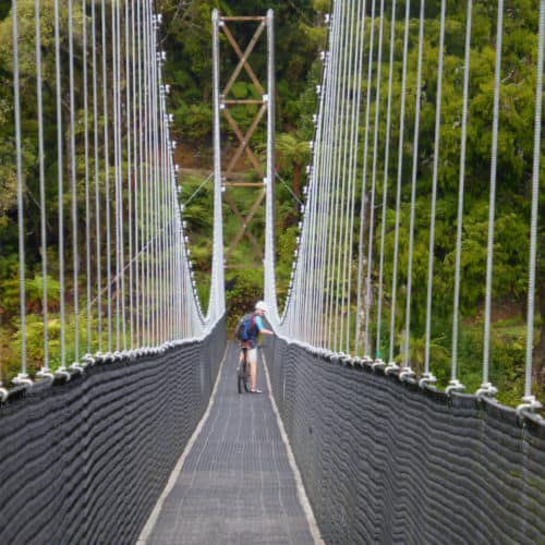 Maramataha Suspension Bridge on the Timber Trail