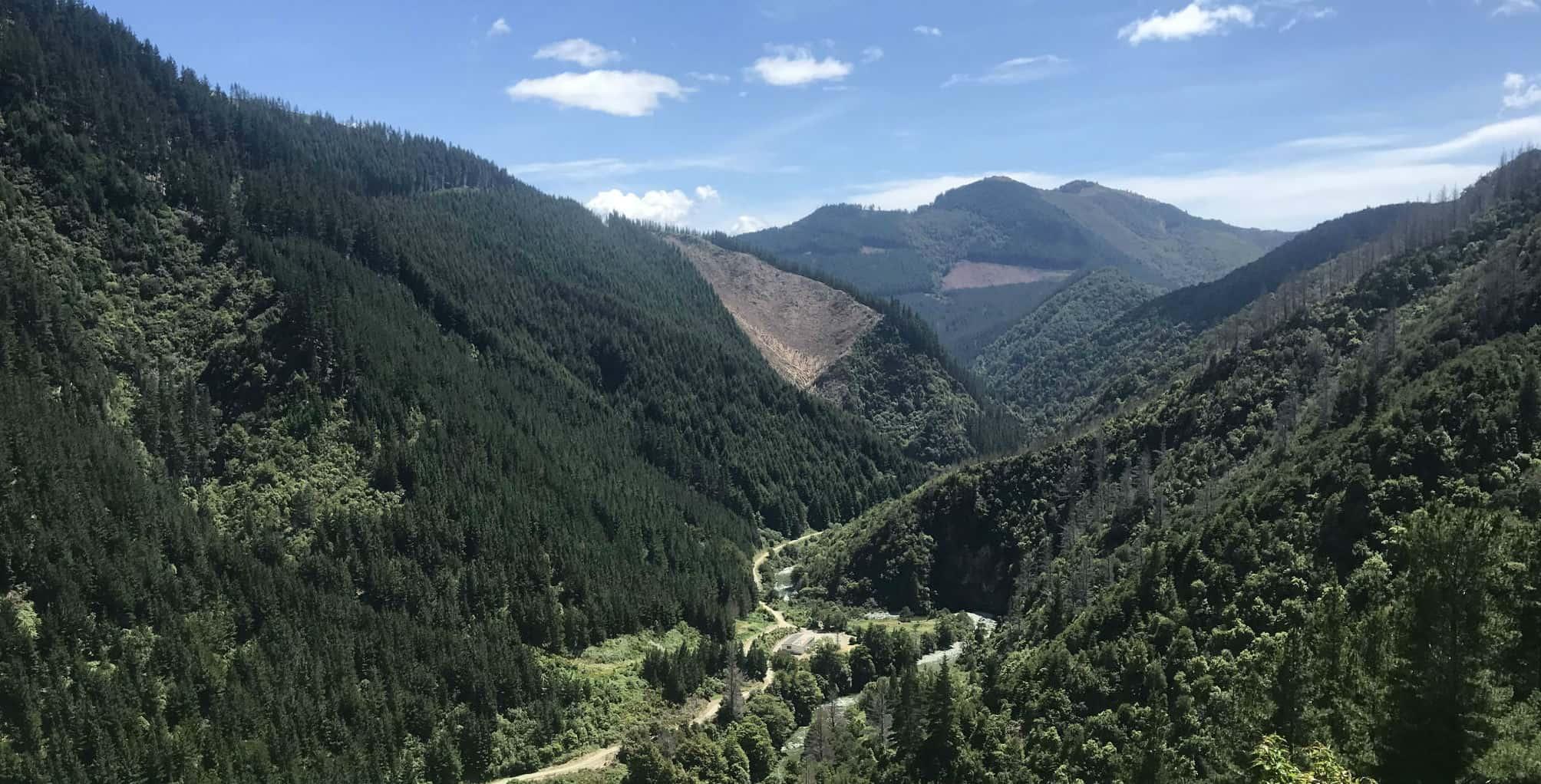 Wairoa Gorge – Riding Single Track Heaven