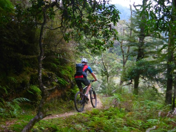 North Island Mountain Bike Package